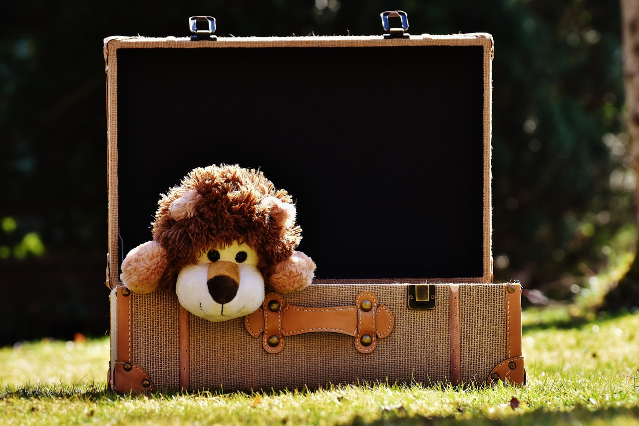 Hints and Tips For Travelling With Toddlers
