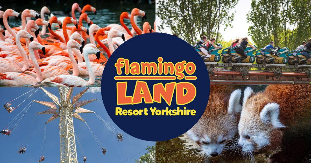 Flamingo Land Nearest Hotels To UK Theme Parks