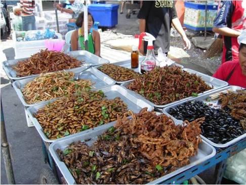 খাদ্য হিসেবে পতঙ্গ অস্বাভাবিক কিছু নয়। ছবিতে দেখা যাচ্ছে থাইল্যান্ডে খোলাবাজারে ফ্রাই করা পতঙ্গ বিক্রি হচ্ছে। ছবিঃ উইকিমিডিয়া কমন্স।