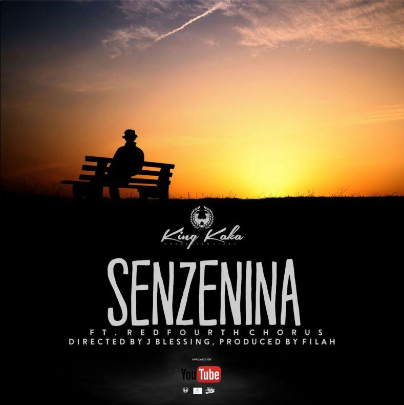 Senszenina cover art photo