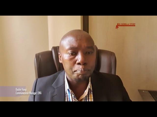 Threats to Gorilla: COVID 19 and Poachers – youtube