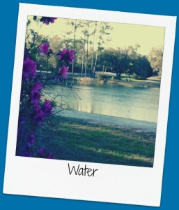 rc water framed