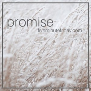 Five Minute Friday Promise