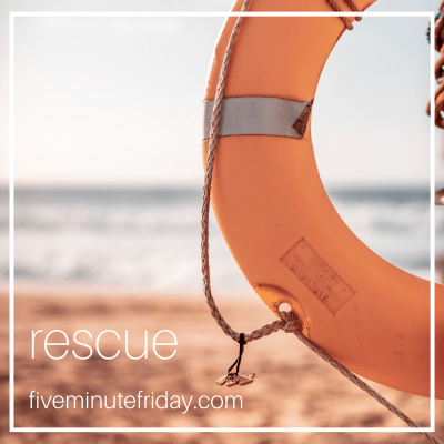 Get rescued or give up?