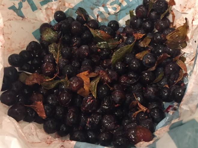 The defrosted and split sloes