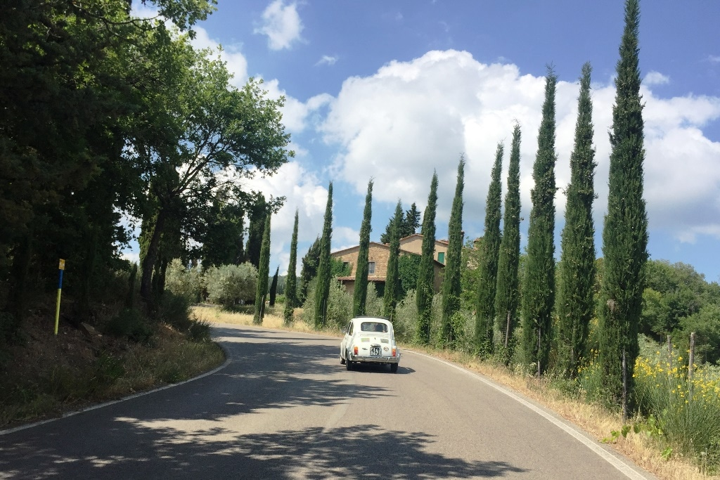Passing by beautiful Italian cypress trees while driving a vintage Fiat 500
