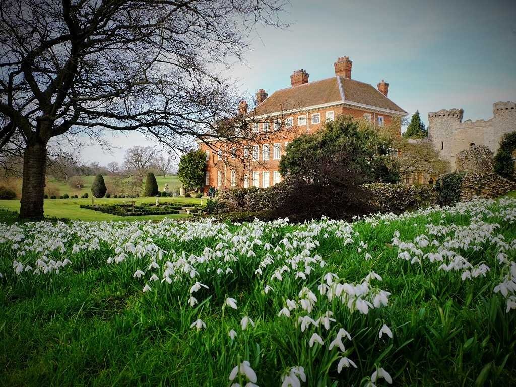 Benington Lordship Gardens snowdrops and house
