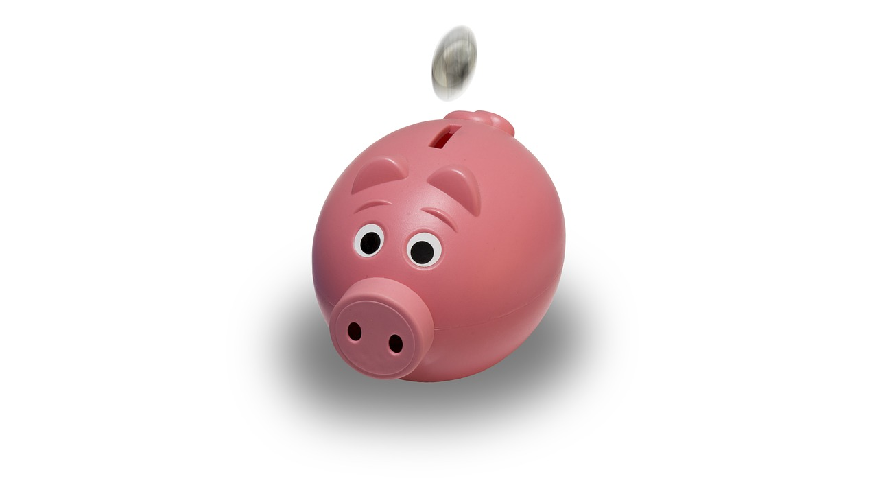 Piggy Bank - Good for Budgeting