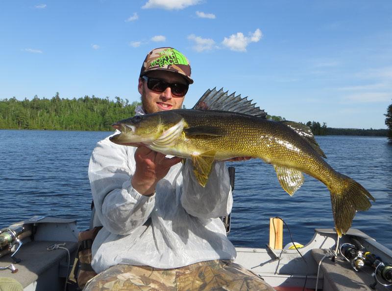 """27"""" Walleye Basswood Lake Boundary Water Canoe Area"""