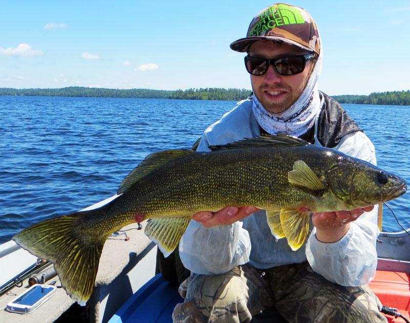 """23"""" Walleye Basswood Lake Boundary Water Canoe Area"""
