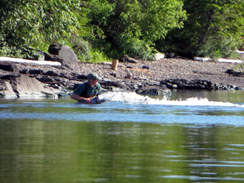 Stocking Rainbow Trout in Lake Superior