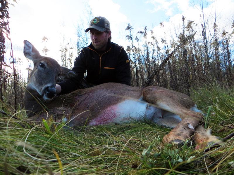 bowhunting Minnesota whitetail deer