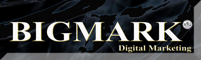 BIGMARK Digital Marketing Logo, SEO Service, Digital Marketing Service, Agency Service