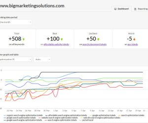 Google Organic SEO Search Rank ~ Page One Accomplishments