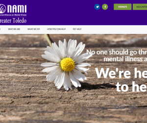 Welcoming New Non Profit Website Design Clients From Toledo
