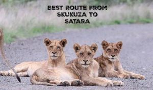 best route from skukuza to satara