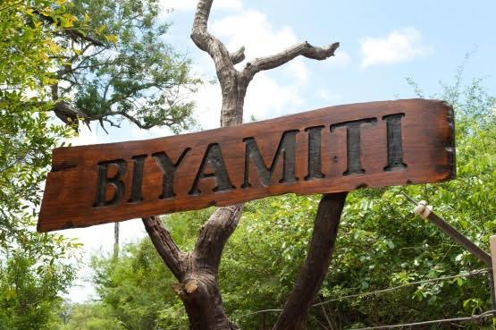 Biyamiti Bushveld Camp Review