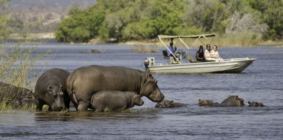 Best Game Reserves in Africa