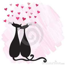 gatos-en-amor-12420106