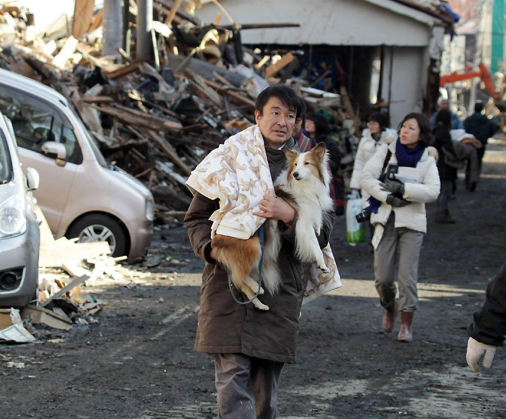 0823 Последствия землетрясения и цунами в Японии