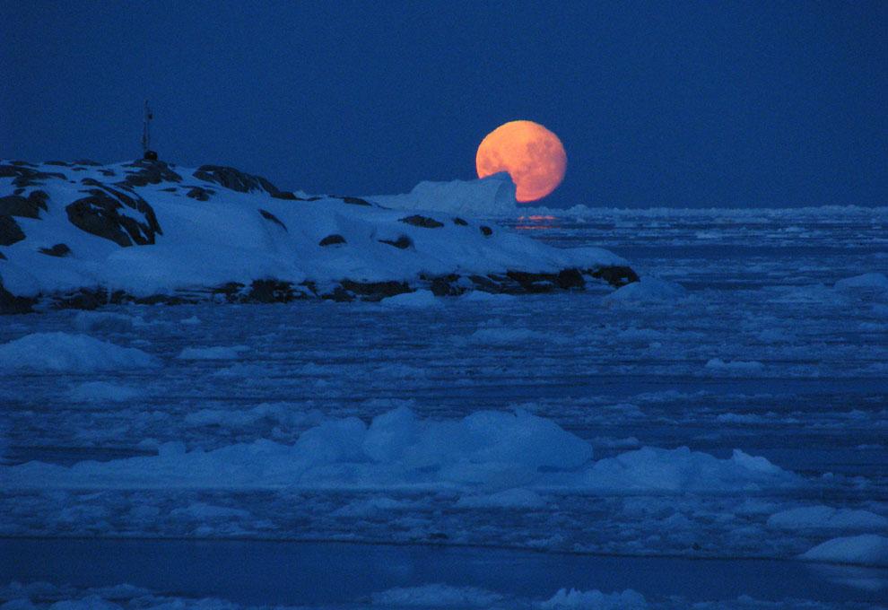 283 Антарктика в фотографиях (Часть 2)