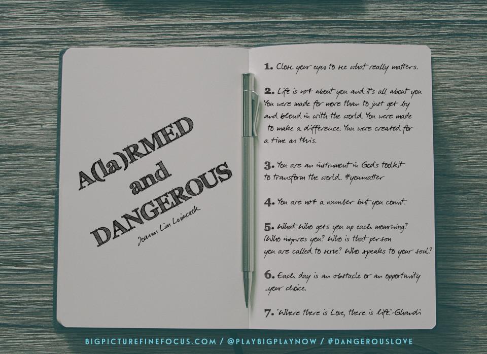 A(la)RMED-&-Dangerous