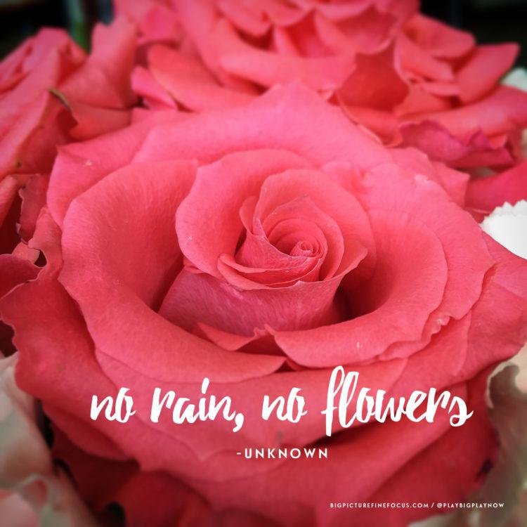 no-rain,-no-flowers