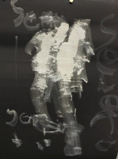 Serena 5Y - 1