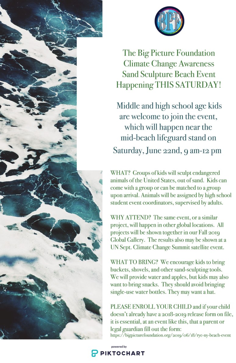 flyer for Saturday beach event