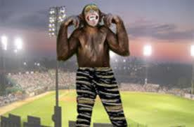 Zubaz and Monkey