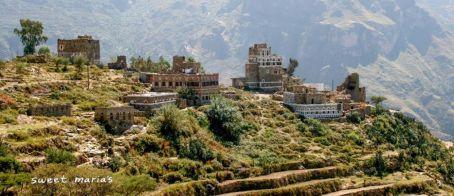 Yemen Mokha
