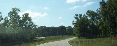 My favorite stretch of road near my neighborhood.
