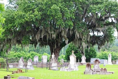 Natchez City Cemetery, Natchez, Mississippi, BigSeance.com