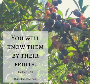 Bearing Fruit: The Evidence and Opportunities of Faith – Big Sister Knows