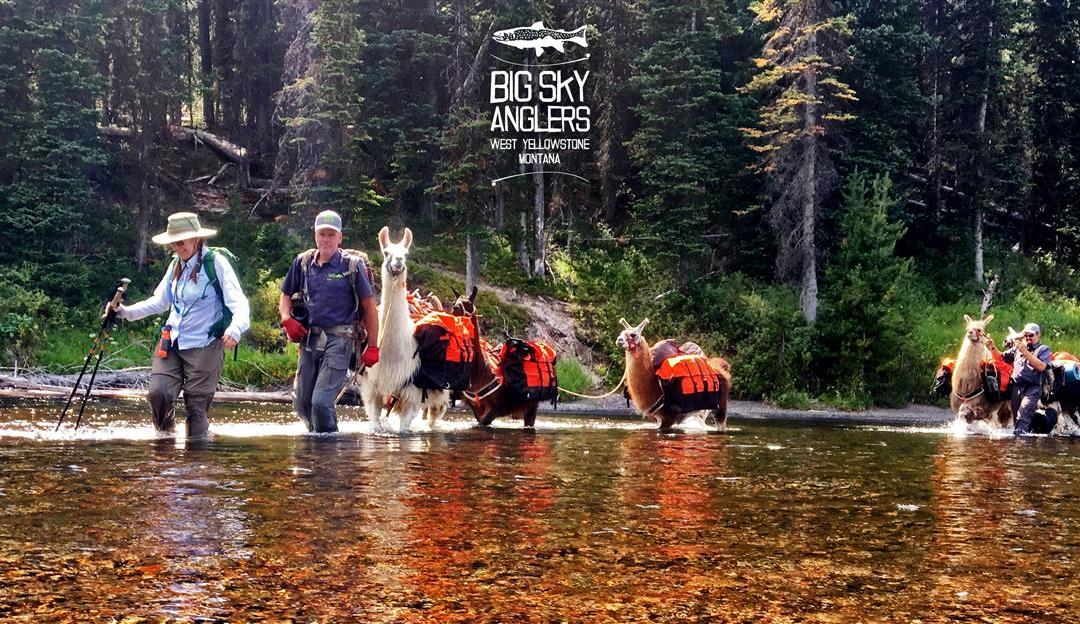 Big Sky Anglers Weekly Fishing Report – 08/23/2018