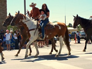 Rent a Horse for Summer - Big Sky Horse Leasing