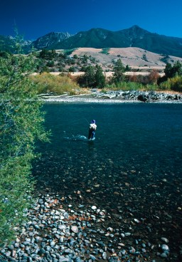 Fly anglers who can pull themselves away from Chico's sybaritic pleasures find prime Yellowstone River runs minutes away in the Paradise Valley. Small stream aficionados can tempt Yellowstone cutthroats in Mill, Pine and Big Creeks, all easy day trips from Chico.