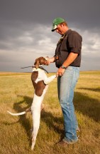 Professional trainer and handler Travis Gelhaus has a moment with liver and white English Pointer Zumbro Ace.