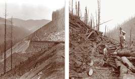 Left: Forest Service workers clear a trail through the aftermath of the fires on the St. Joe National Forest. Right: Railroad and aftermath of the fire on the Coeur d'Alene National Forest. Photos Courtesy Forest Service