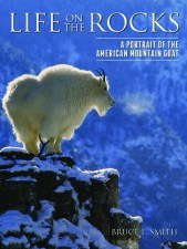 This journey was part of the author's research for his ​new book, Life on the Rocks: A Portrait of the American Mountain Goat,​ in which he​ reveals this remarkable cliff-dweller's life history and conservation challenges.