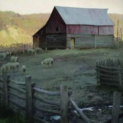 """Corralled"" | T. Allen Lawson | Oil on Linen | 25"" x 25"""