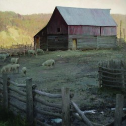 """Corralled"" 