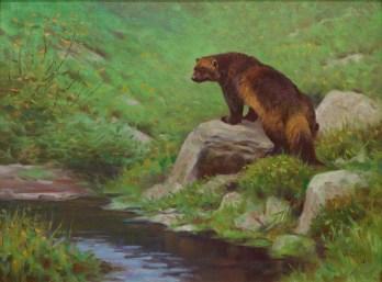"""Wolverine"" | Oil on Linen | 18"" x 24"" | Muskwa Kechika Mountains, British Columbia"
