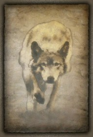 """""""Wolf"""" 