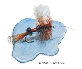 Royal-Wulff_web.jpg