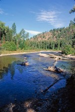 Fish Creek supports westslope cutthroat, bull, brown, brook and rainbow trout, along with mountain whitefish. In the middle Clark Fork River basin, it is one of the best remaining refuges for native westslope and bull trout. Photo by Jeff Erickson