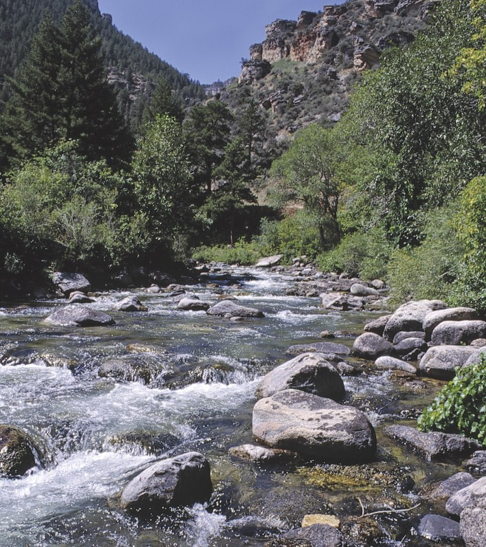The Tongue River Canyon is mainly accessible to hiking anglers: Expect fast pocket water, deep pools, enticing runs and aggressive trout.