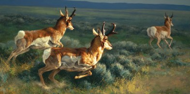 """""""The Buddy System"""" 