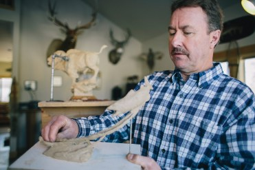 "Bozeman sculptor Ott Jones works in his studio on a maquette of a brown trout. ""I'm trying to tell a story,"" the artist says."