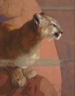 """Lionheart"" | Oil on Linen | 40"" x 30"""